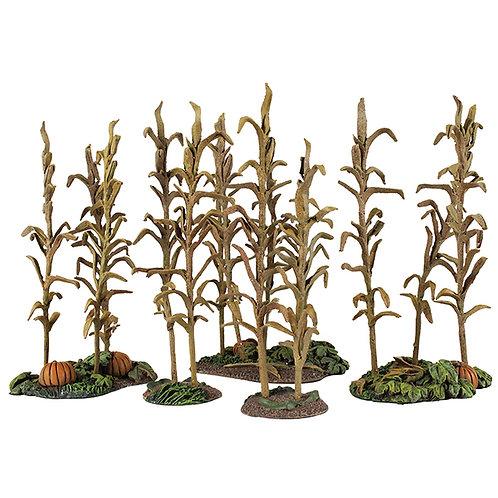 51022 - Fall 18th/19th Century Corn with Squash