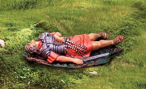 CS00635 - Dead Roman
