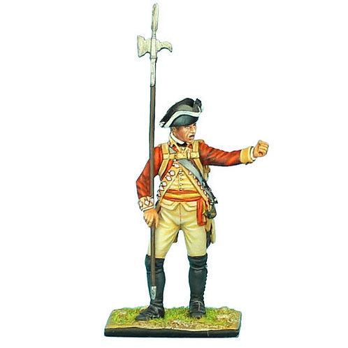 AWI044 - British 22nd Foot NCO