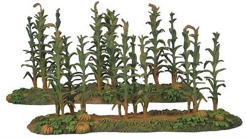 17614 - 18th-20th Century Corn Rows