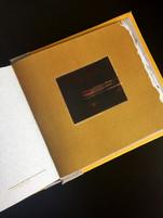 Artist Book, 2015