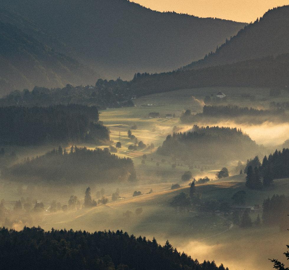 Nebel über Titisee-Neustadt