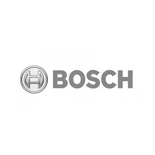 Ref Bosch.jpg