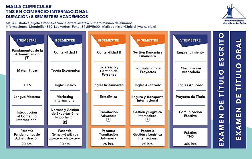 tns en comercio internacional.jpg