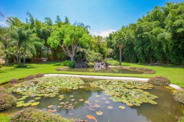 Jardín huayacan.JPG