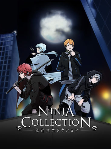 Ninja Collection.jpg