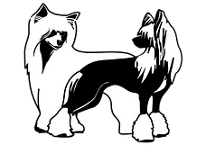 Chinese crested club czech (1).png