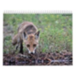 calendario_mensual_2020_de_animales_y_na