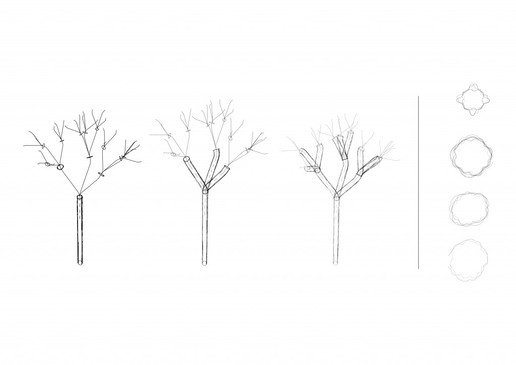Branching.jpg