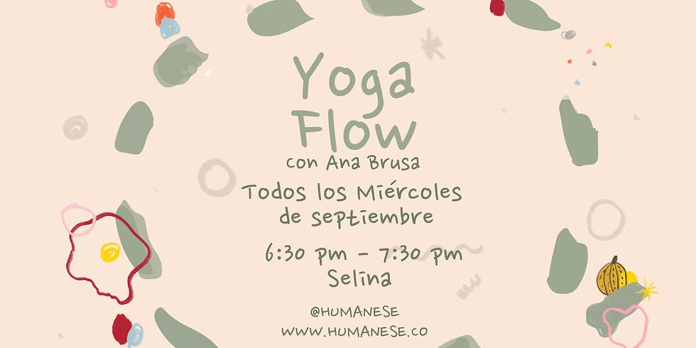 Miércoles de Yoga