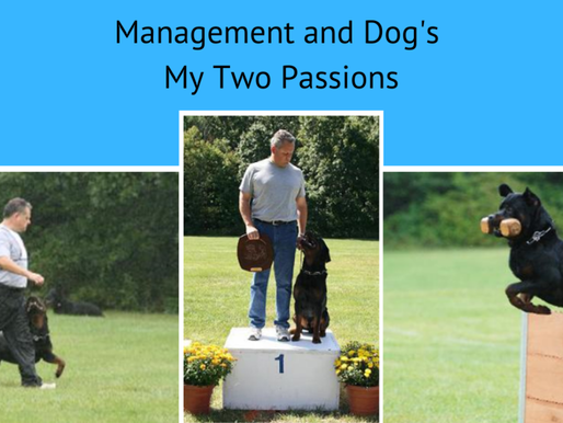 What does Dog Training have to do with Management?