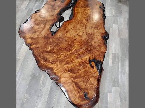 California Redwood Burl