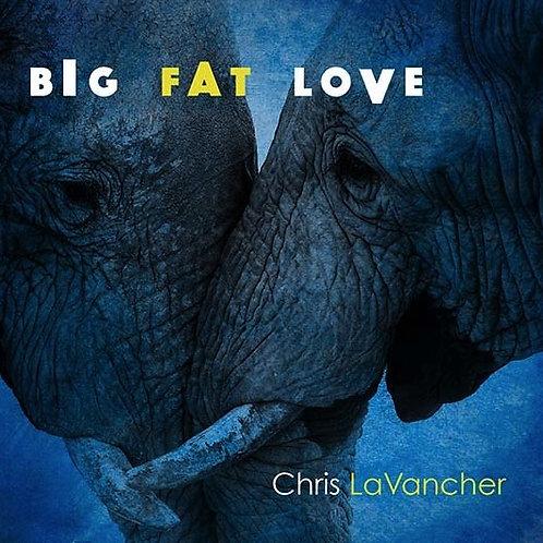 Big Fat Love - CD