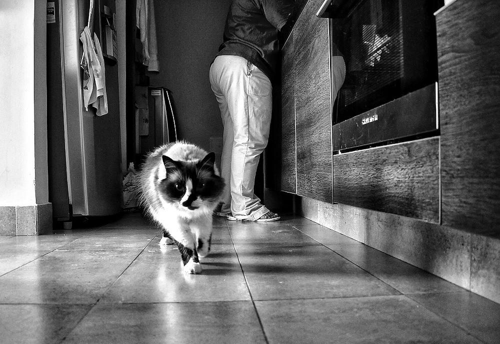 Foto de Diana Silva