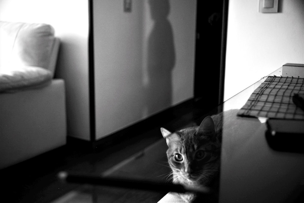 Foto de Natalia Rivero