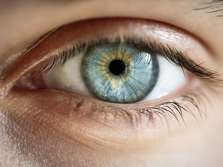 Promising Stem Cell Research: Restoring Vision In People With Macular Diseases