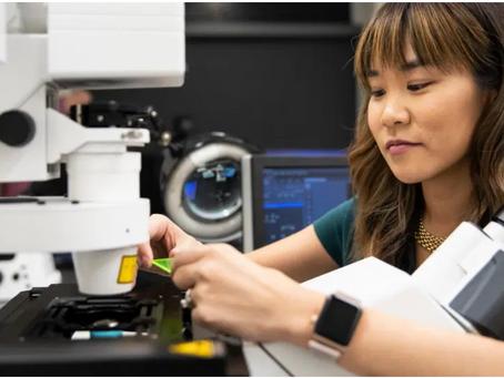 Nova tecnologia: imagens de células imunológicas