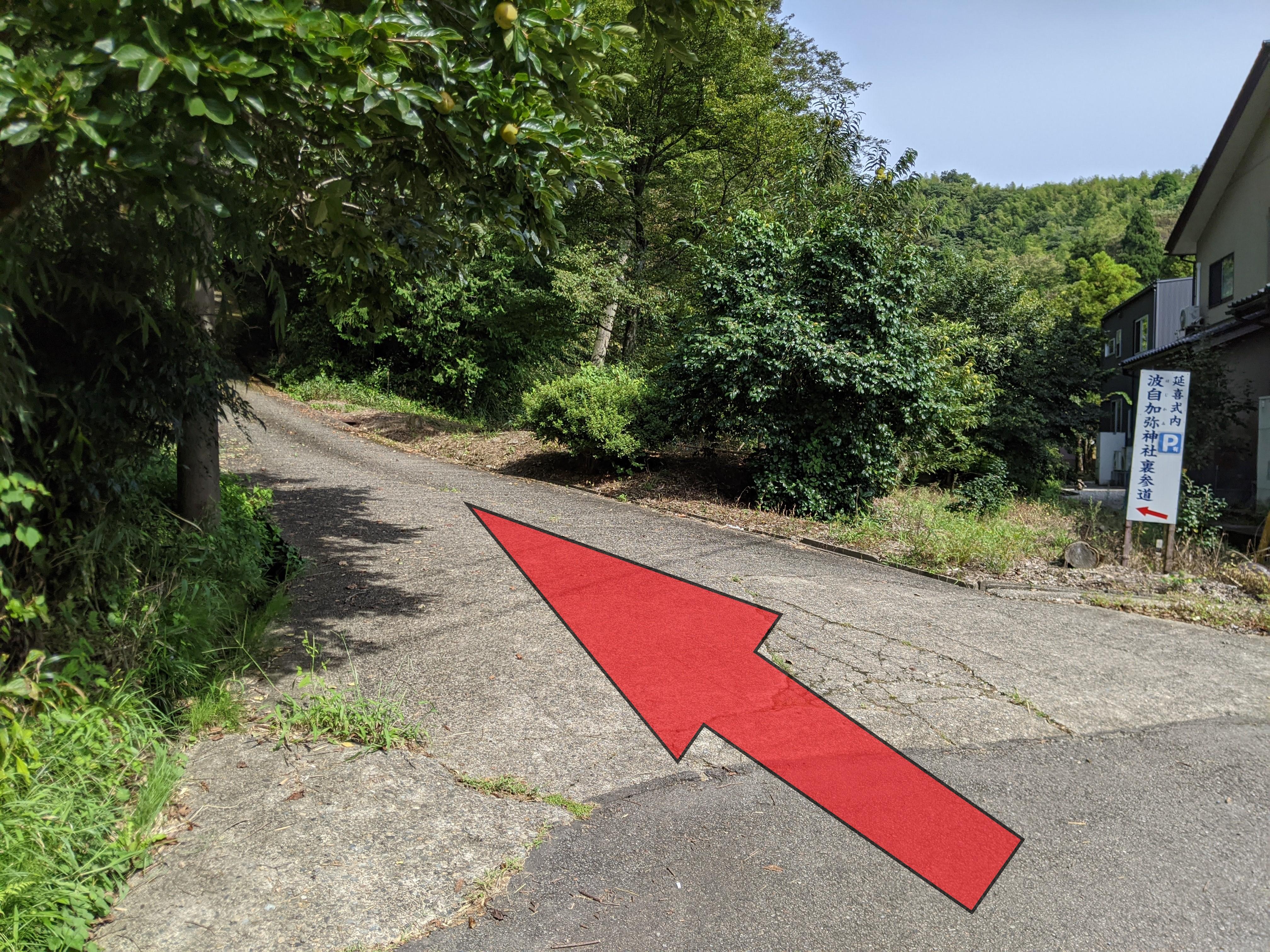 この坂道を進むと駐車場です