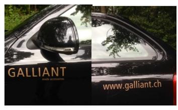 GALLIANT
