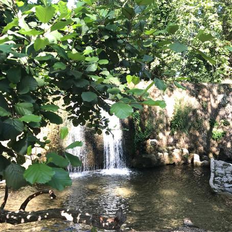 La cascade du Domaine de la Castille, un petit coin de Paradis