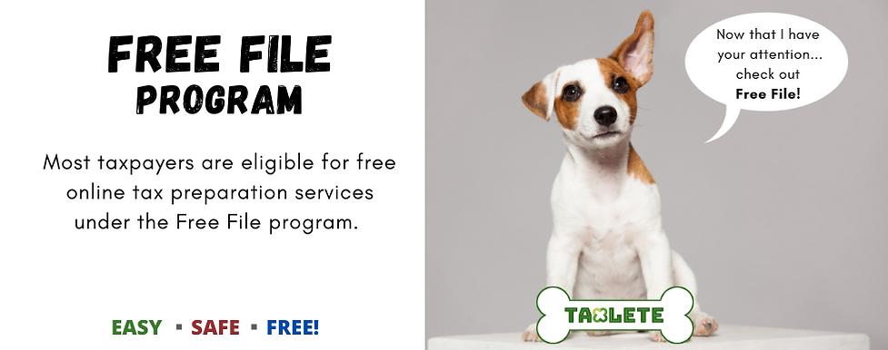 Free File Program.png