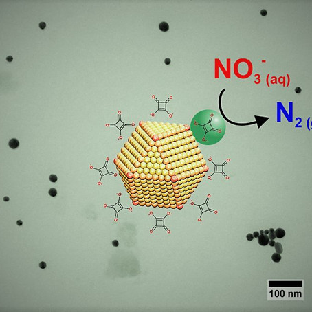 Catalytic Nanoparticles for Water Purification