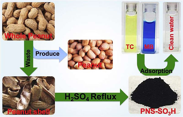 BiomassFilterTOC for web.jpg