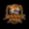 DPlogo3-removebg-preview.png