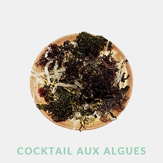cocktail aux algues.png