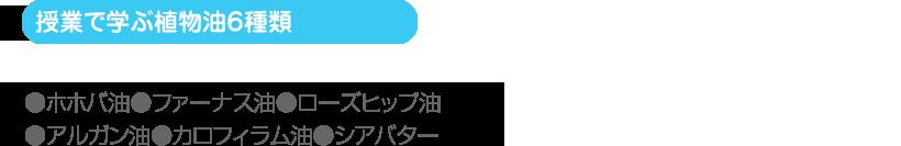 (授業で学ぶ植物油6種類)●ホホバ油●ファーナス油●ローズヒップ油 ●アルガン油●カロフィラム油●シアバター
