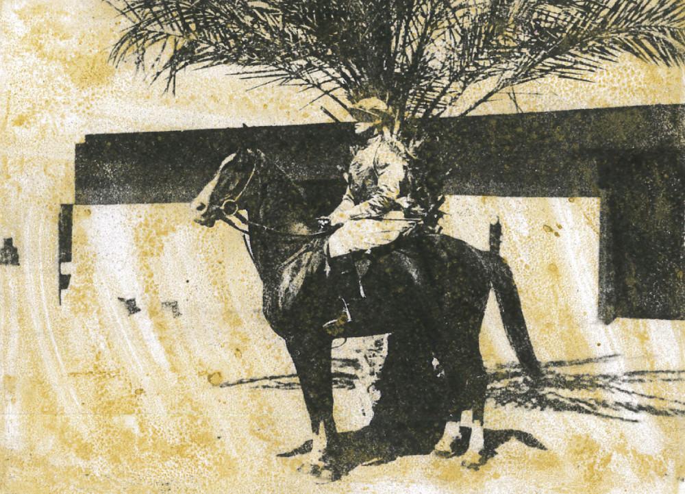 'Shere - Ali' Unplaced in Arabian Plate Basrah Races 1918 Owner - 'Walpole'