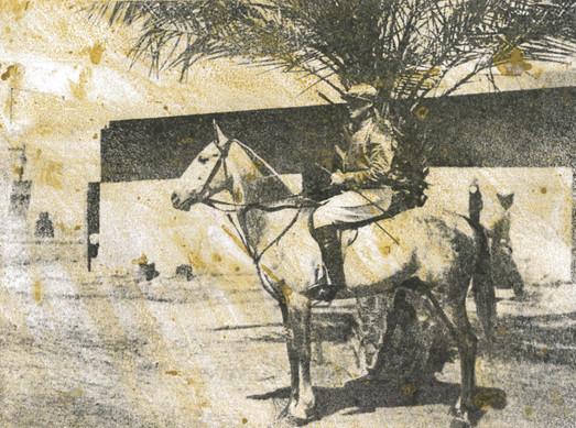 Platinum, Winner of Arabian Plate Basrah Races 1918
