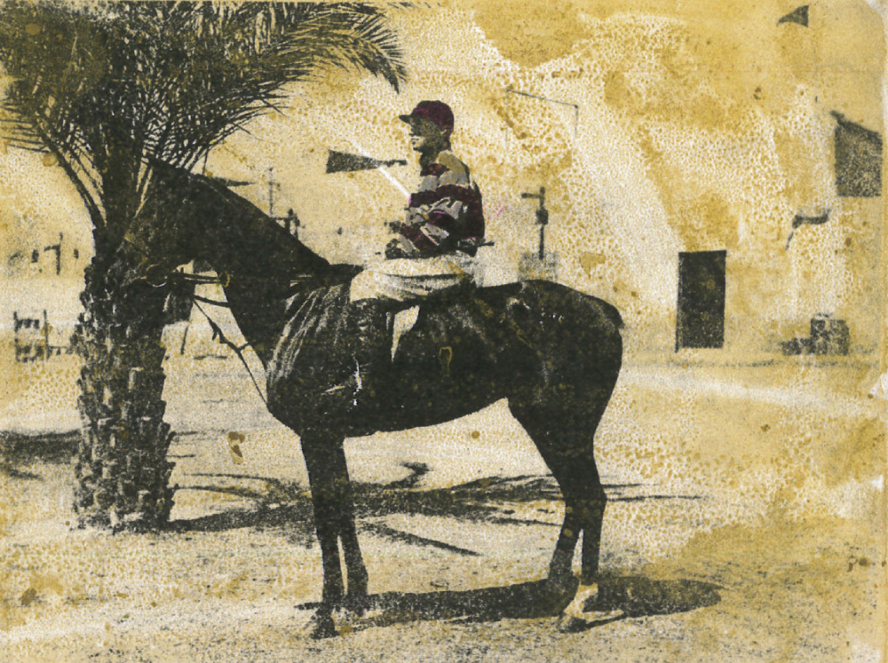 Annie Laurie, Winner of Tigris Plate, Basrah Races 1918 Owner - Capt.J.W Beaumont R.A.V.C.