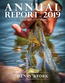 2019 AR Cover.png