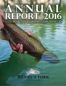 2016 AR Cover.png