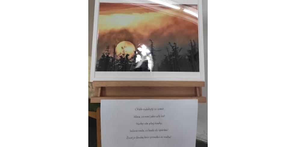 Výstava fotografií Krnova a jeho okolí