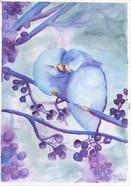 Aquarela Pássaros