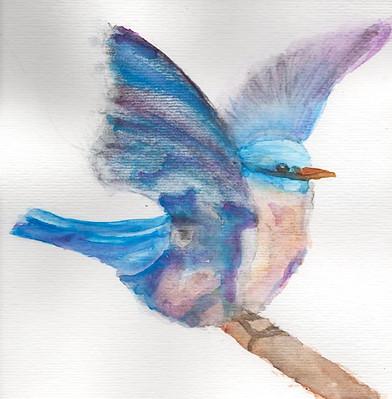 Aquarela Pássaro Azul
