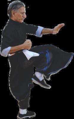 Mestre Kim Wing Chun Kung Fu Familia Kim