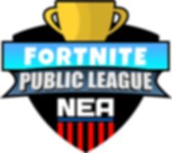 Fortnite Public League.png