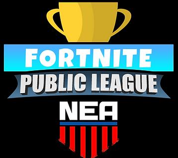 Fortnite Public League.png