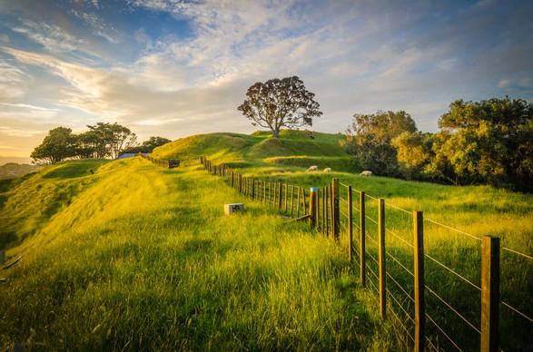 Ian Rushton | One Tree Hill