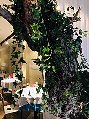 restaurant_Wladimir_à_Valencia_Espagne.j
