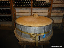 A Big Wheel of Cheese in an Italian Cantina.