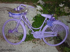 Everything Violet on this Bicycle!...at Cison di Valmarino Italy.
