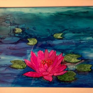 Magenta Lotus