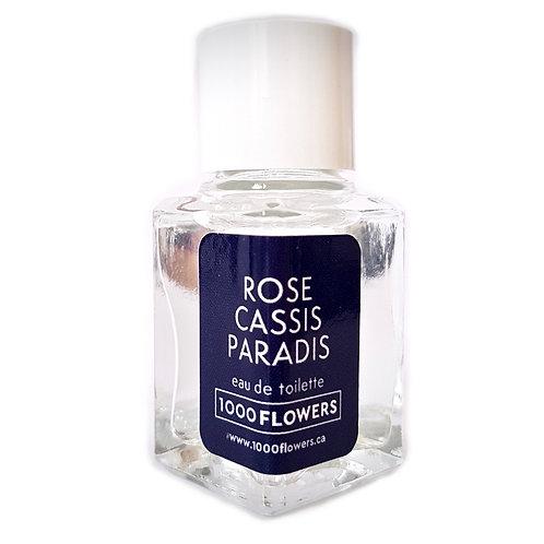 ROSE CASSIS PARADIS MINI
