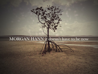 Morgan Hann releases a solo indie/pop opus