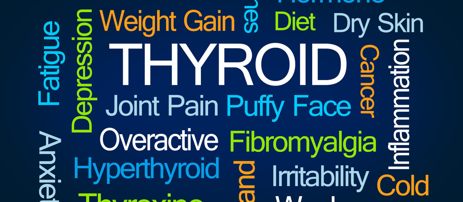 The Body My Thyroid Built*