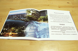 Chinese Brochure (Content)